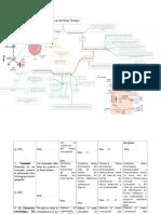 hormonas tiroideas - mapa conceptual