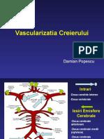 Vascularizatia+Creierului