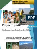 PROYEC. PERFIL CMINO