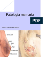 5 anatomia patologica - mama2