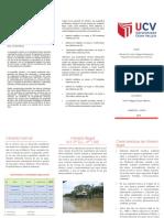 triptico mineria formal-ilegal.pdf