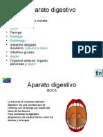 3_Aparato_dijestivo.pps