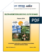 Boletín Agrometeorológico Mango_febrero2016