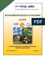 Boletín Agrometeorológico Mango_junio2016