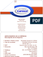 presentacincarozzi-100707224259-phpapp02 (1).ppt