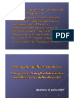 2009 DOC Relazione_bergamaschi[1]