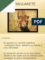 El Yaguareté