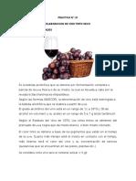REPORTE N°01 VINO
