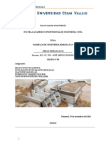 Informe de Modelos Hidraulicos Trabajo