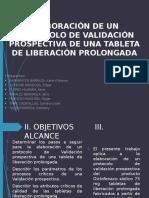 Protocolo de Validación Final (1)