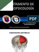 Lóbulos frontales