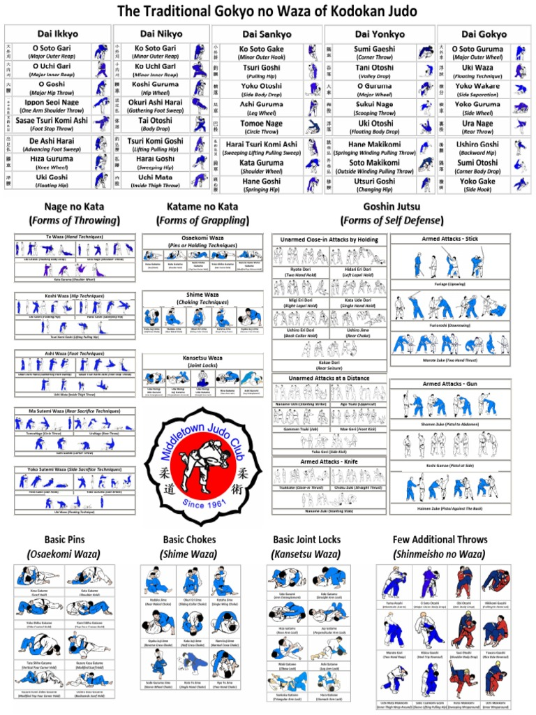 Judo Techniques Poster pdf