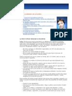 Mitos y realidades de la insulina.pdf