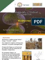 Clase 3 Micotoxinas
