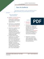 Ejercicio de Ap N° 1.7 Tipos de Auditoría