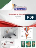 Semiologia Sistema Urinário (2)