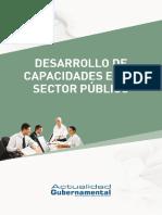 lv_11_desarrollo_capacidades.pdf