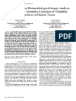 Review Paper on Histopathological Image Analysis