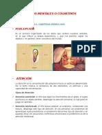 PROCESOS MENTALES O COGNITIVOS.docx