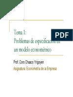 TEMA 1_Problemas de Especificación
