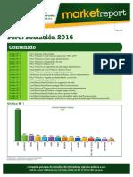 cpi2016.pdf