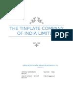 Tin plate company