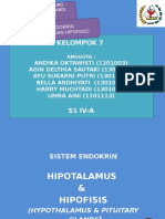 ppt hipofisis hipotalamus