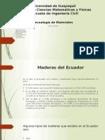 Maderas Expo