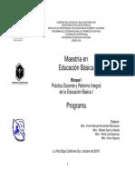 RIEB manual.pdf