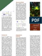 Triptico - Origenes de La Computación Neuronal