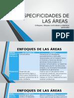 ESPECIFICIDADES DE LAS ÁREAS.pptx