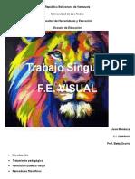 Trabajo Singular Formacion Estetica Visual