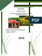 Laboratorio de Diversidad Vegetal 5