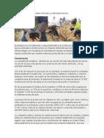 Ecomadera Trabaja Para Mitigar La Reforestacion