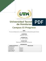 Cap 3 y 4 Proyectos 2016 (2).docx