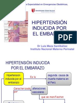 Causas del embarazo hipertensión inducida archivo pdf