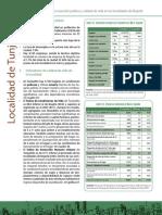 8943 Inversion Publica Calidad de Vida Tunjuelito