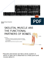 How Bones and Muscle Interact rep