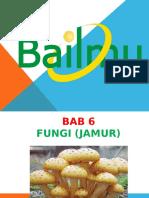 Bab 6 Fungi