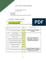 Model Chestionare Audit API Conta