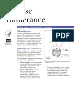 Lactose Intolerance 508 (1)