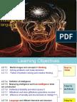 Chap 7 Cognition