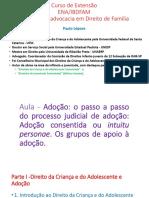Apresentação_aulas 10 e 12_ Dr. Paulo Lépore