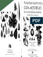 Plantas Nativas Parte1 (Libreria Abre Tu Mente Facebook)