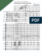 Рихард Штраус - `Тиль Уленшпигель` (1894-95) op. 28 партитура.pdf