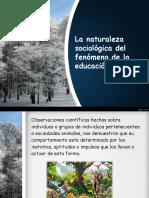 lanaturalezasociologicadelfenomenodelaeducacion-140224182506-phpapp01