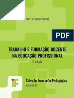 Trabalho e Formacao Docente - Livro IFPR