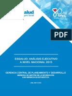 Analisis Ejec n Nacional 2015