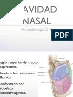 Cavidades Nasales y Paranasales 2016