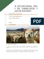 Analisis Situacional Del Sector de Camelidos y Politicas de Estado